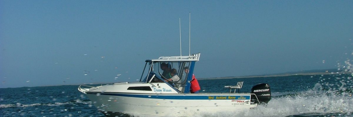 Fishing trip with West Auckland Marine Boat