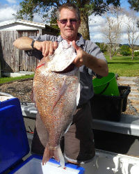 Glen Lloyd owner of West Auckland Marine fish catch